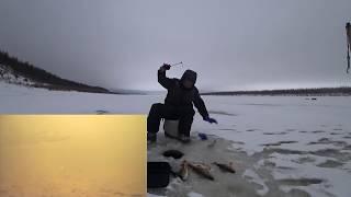ТЯГАЮ ГОРБАЧЕЙ по ЗАЯВКАМ с подводными съемками Якутия Yakutia