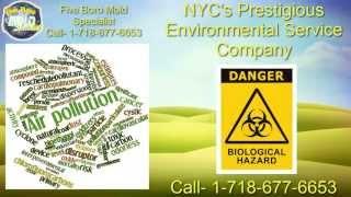 NYC Environmental Services
