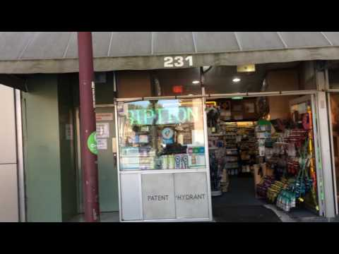 THE GOODNESS SANDWICH STORE BEST IN SYDNEY AUSTRALIA