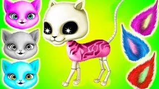 Fun Kitten Pet Care - Cat Hair Salon Birthday Party - Play Kitten Haircut Care & Makeover Games
