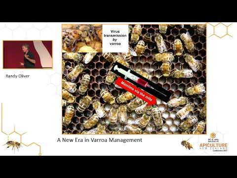Apiculture New Zealand - Randy Oliver Keynote 2