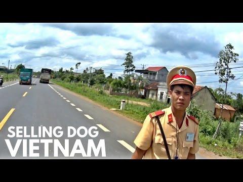 SELLING DOG AT  A VIETNAM MARKET