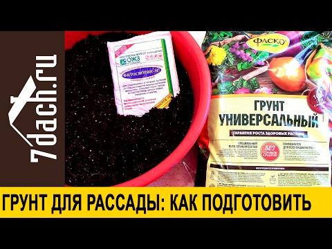 Как подготовить грунт для рассады - 7 дач
