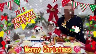 2018.12.22 自宅で友達のだんごも一緒にクリスマスパーティーをしました...