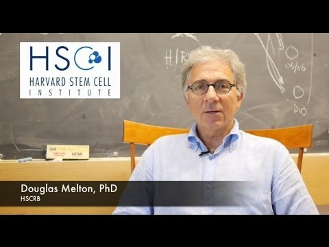Meet HSCI Co-Director Douglas Melton, PhD