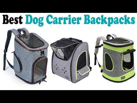 5 Best Dog Carrier Backpacks 2018