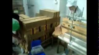 outer box feeder with inkjet printer for MFG, EXP and Batch Number Thumbnail