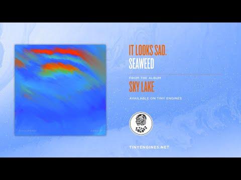 It Looks Sad. - Seaweed Mp3