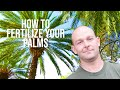 How To Fertilize Your Palms with O'Neil's Tree Service