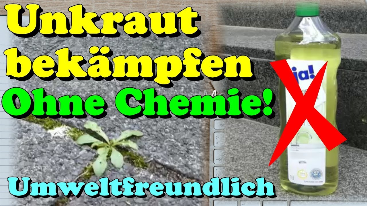 Rasen Unkrautfrei Ohne Chemie Effective Weed Control Environment Friendly And Without Chemistry Howto Tutorial Gardening Tip