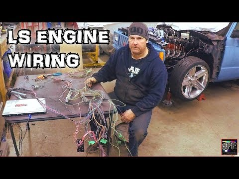 Hotrod Standalone Fuel Injection ECM Wiring + Rob blows a gasket | Turbo 5.3 LS S-10 Budget build
