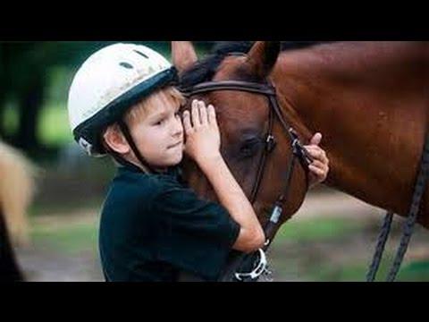 Каждый мечтает о лошади - немецкий детский фильм о добром коне
