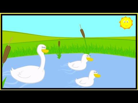 Childrens Songs -  Three Little Ducks