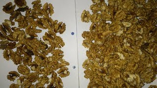 Эксперимент по сохранности товарного вида грецкого ореха, или почему ядро темнеет