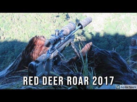 Red deer ROAR  22-23 April 2017  - Last Chance