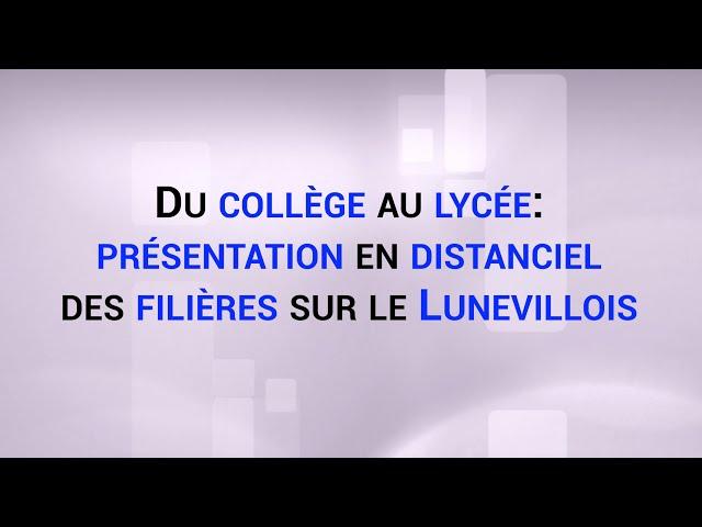 Du collège au lycée: présentation en distanciel des filières sur le Lunevillois.