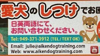 Aiken Dog Training Pack Walk Irvine