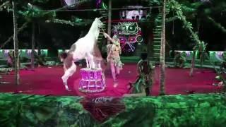 Королевский цирк Гии Эрадзе (4)