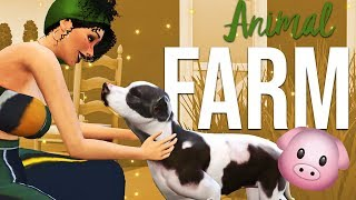 REALISTIC ANIMAL FARM MOD // THE SIMS 4 MOD REVIEW