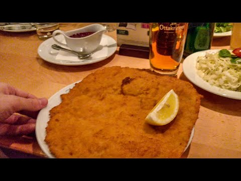 Vienna's most famous schnitzel!    EUROPEAN ADVENTURE DAY4