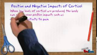 Norepinephrine and Cortisol