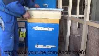 Пчеловодство ОБЗОР УЛЬЯ 12 рамок