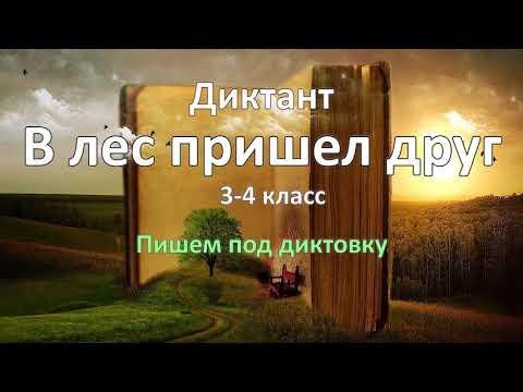 Диктант по русскому языку за 3-4 класс, В лес пришёл друг