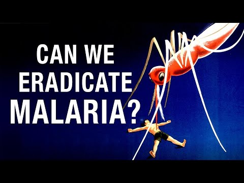 Can We Eradicate Malaria?