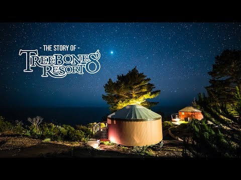 The Story of Treebones