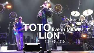 Play Lion (Live)
