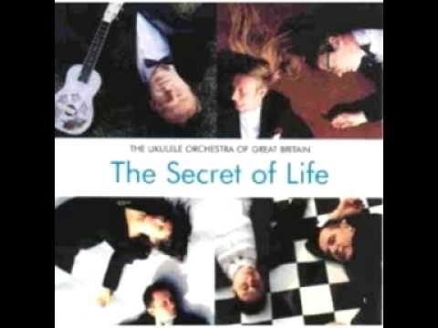 the ukulele orchestra of great britain the secret of life