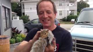 New London's Squirrel Man! How To Keep A Pet Squirrel