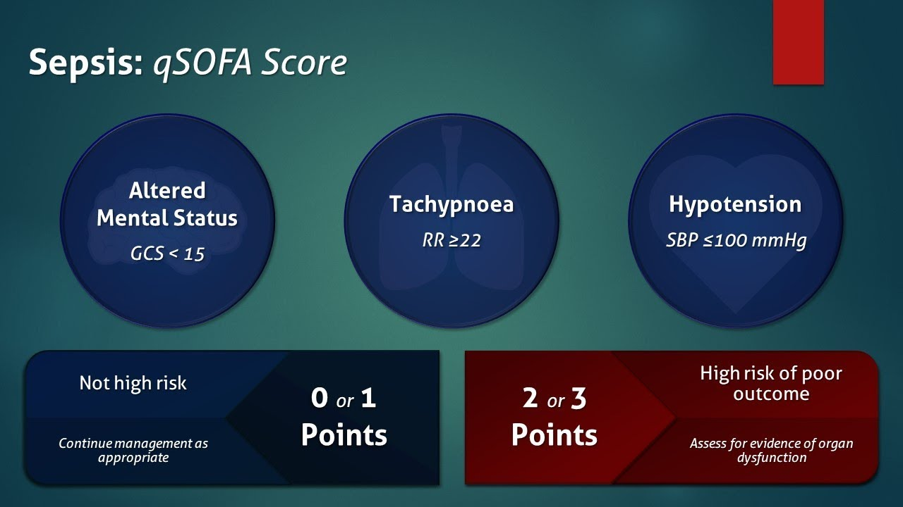 Difference Between Qsofa And Sofa Sepsis Qsofa Score