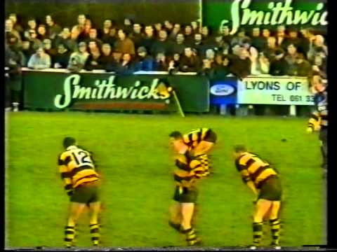 Young Munster Celebration 1993 Season Review Tony Grant , Len Dineen