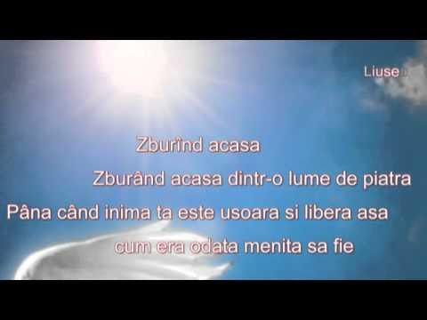 Birds of Paradise - Peter Sue Marc (Pasarile paradisului)
