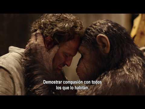la-guerra-del-planeta-de-los-simios-|-instituto-jane-goodall-|-12-de-julio-en-cines