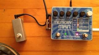 Stereo Memory Man w/ Hazarai loop record mod