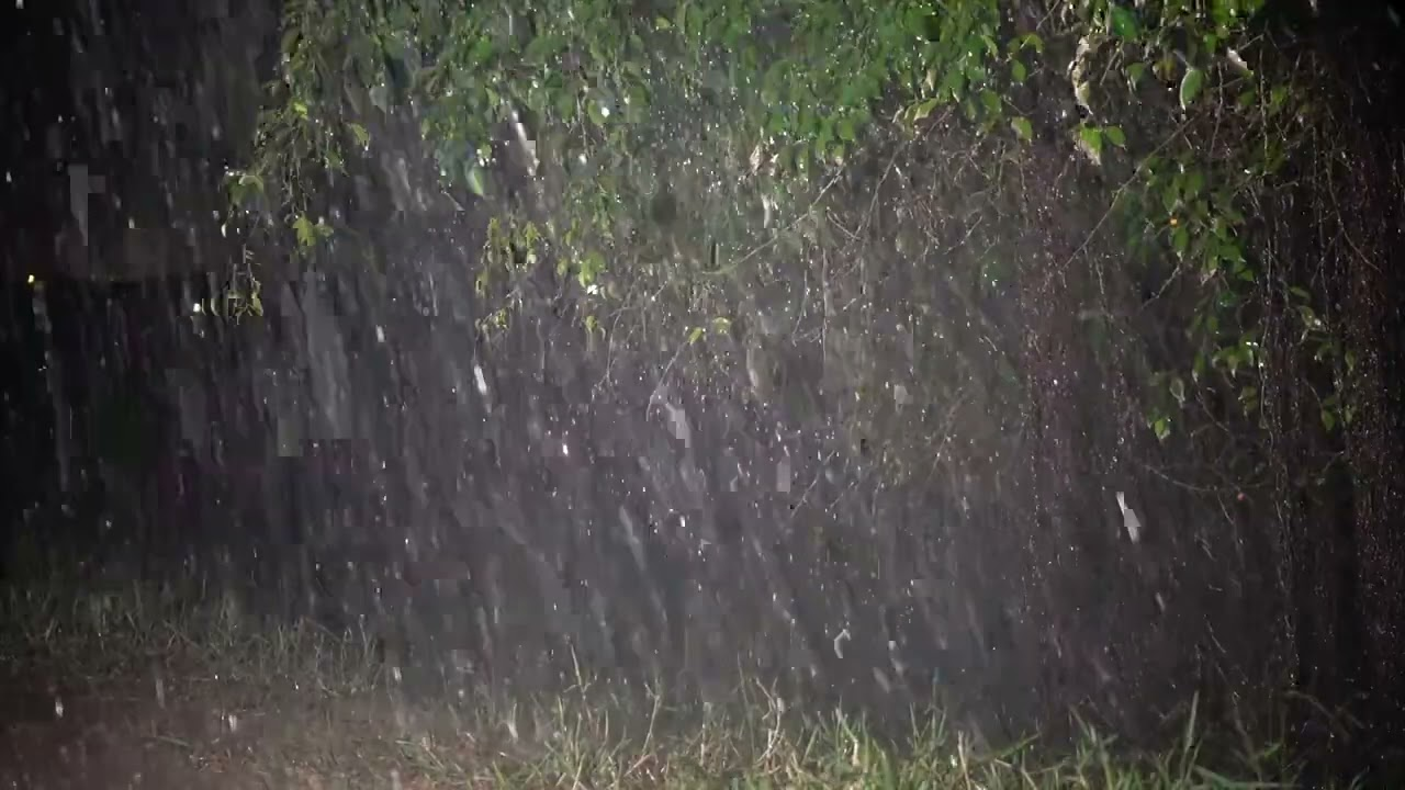MAGICAL SLEEP With Splashing Rainfall & Distant Thunder Sounds In Night Forest | Sleep, Relax, Focus