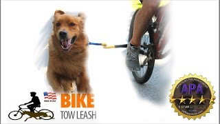 1 Running Dog Bike Tow Leash | Safe & Stable Dog Bicycle Leash | Learn About Biking Your Dog Safely