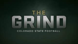 The Grind | Never Satisfied