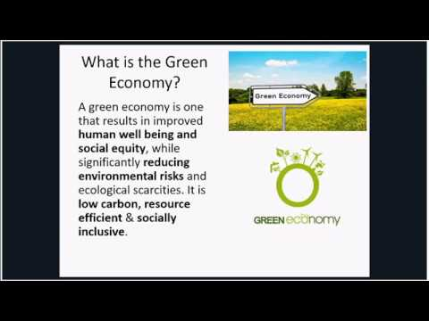 Webinar: The Green Economy – What is it? Is it Working? What