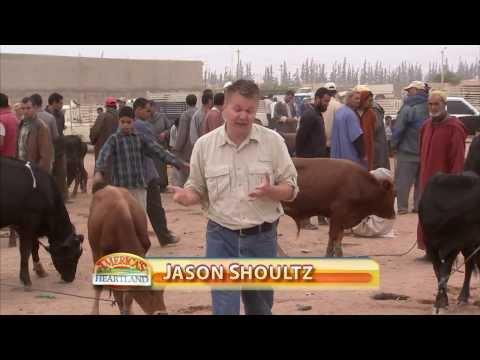 U.S. Grain in Morocco  - America's Heartland