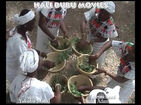 Download FIDIRAH WAKA 2 (Hausa Songs / Hausa Films)