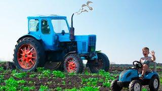 Синий трактор по полям едет. Видео для детей про настоящий трактор