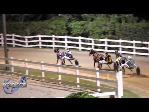 Harness Pony Racing Nov 26
