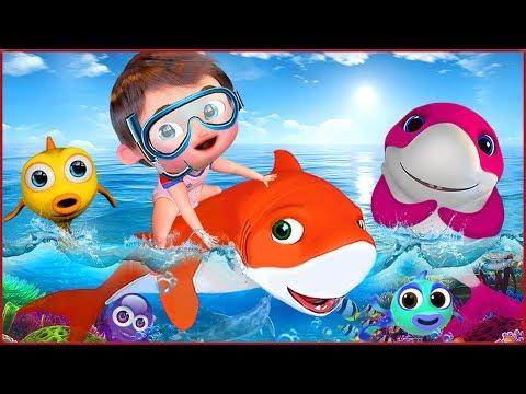 🔴 Baby Shark   +More Nursery Rhymes & Kids Songs - Banana Cartoon
