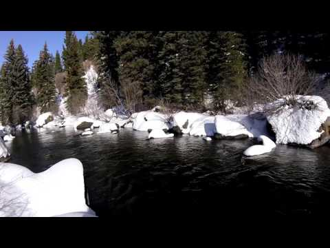 Yampa Valley Anglers Winter Tailwaters