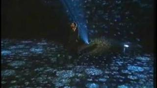 Eurovision 1995 - 05 Norway - Secret Garden - Nocturne