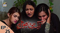 Ek hi bhool - Ep 25 Full HD - 29th June 2017 - ARY Digital Drama