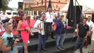 nou 2016 Guta si Marian Mexicanu show periculos nunta Bocsa la Costa